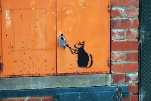 banksy-style-rat