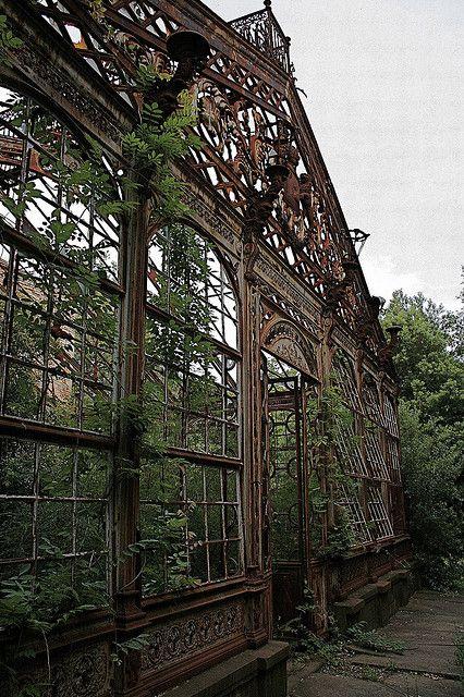 abandoned-aviary