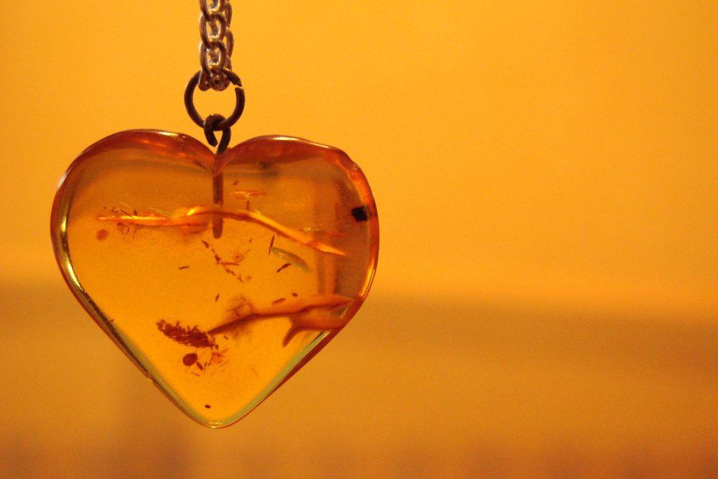 heart-1202129