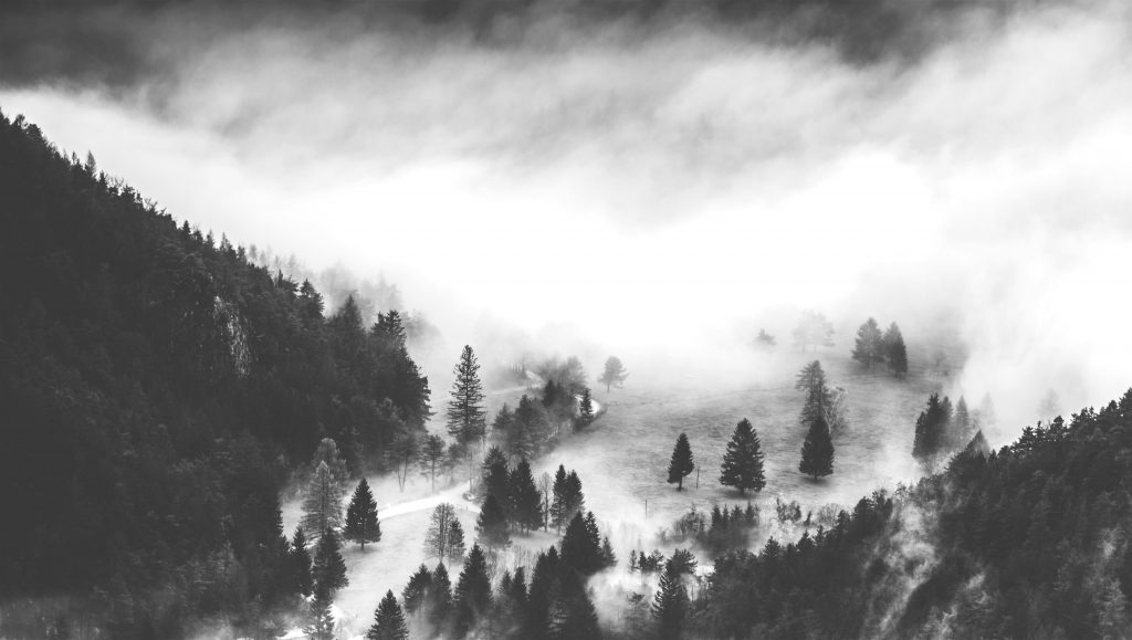 Mist flows in a forested mountain valley.