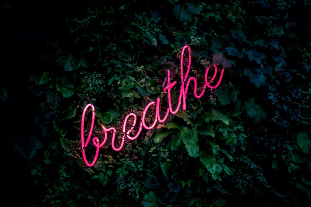 The word 'breathe' in pink neon rests on a bank of green foliage.